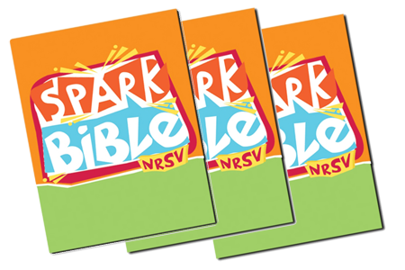 Bibles For Sunday School Students